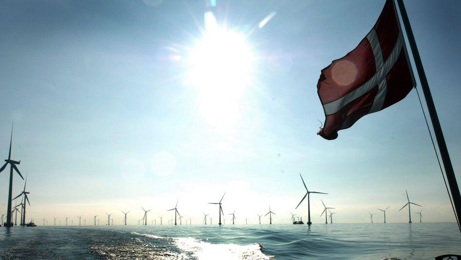 Offshore-Windpark: Wird Windstrom bald komplett wettbewerbsfähig?