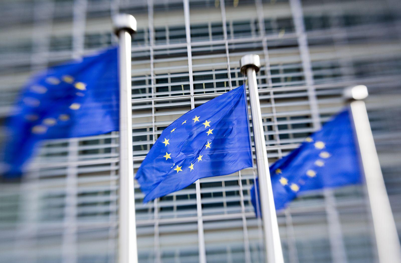 EU Flagge/ Flaggen