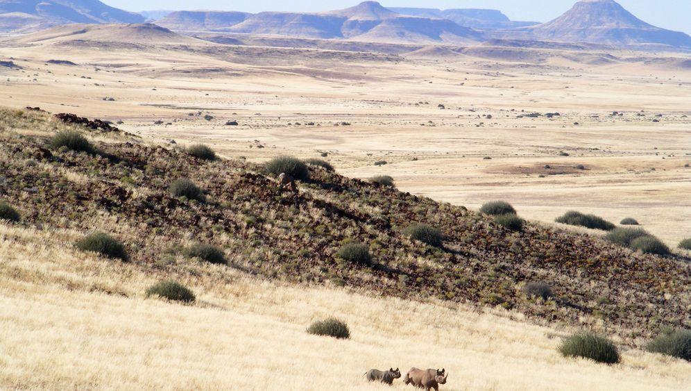 Namibia: Wüsten-Nashörnern auf der Spur