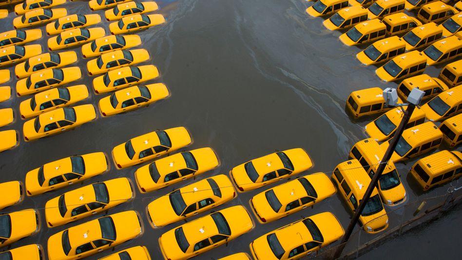 New Jersey unter Wasser: Das Geschäft mit der Katastrophe lockt immer mehr Investorengelder an. Die Folge: die Preise für Rückversicherungsschutz sinken