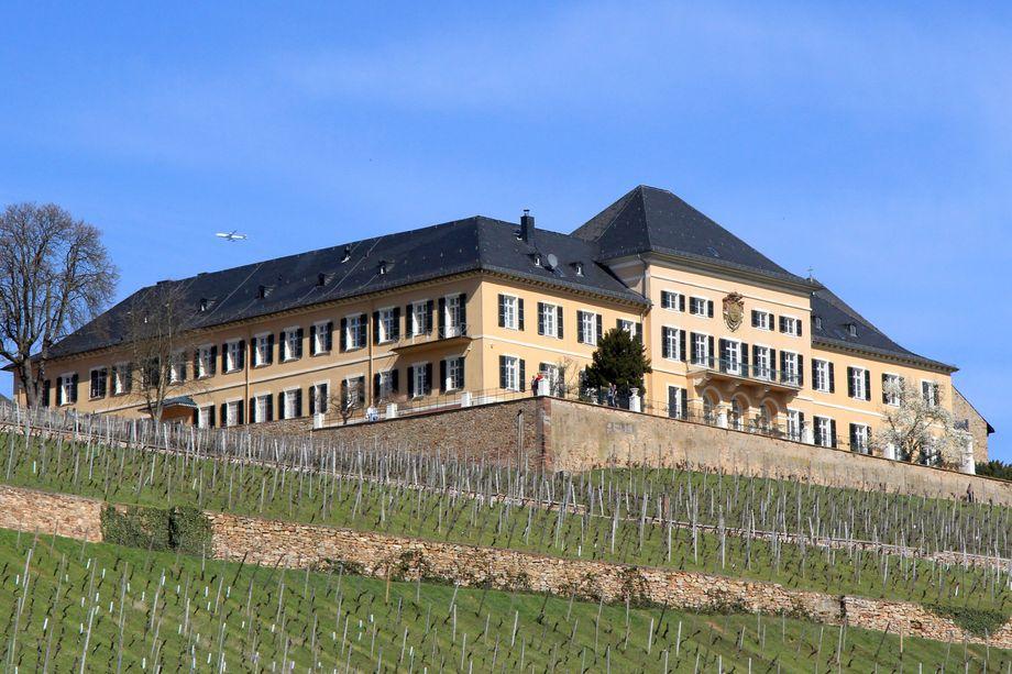 Schloss Johannisberg bei Geisenheim ist von Riesling-Weinbergen umgeben
