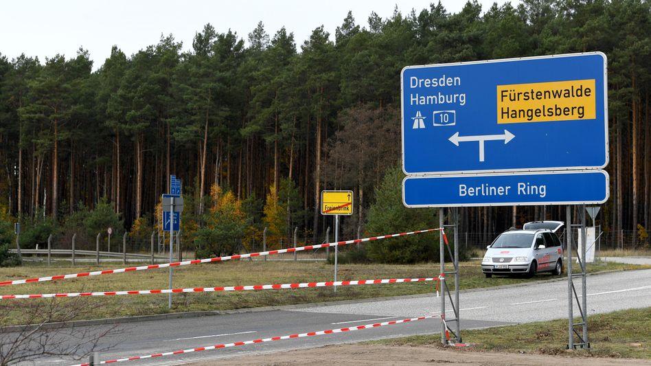 Brandenburg, Gemeinde Grünheide: Auf diesem Waldstück soll das Tesla-Werk mit zunächst 3000 Arbeitsplätzen entstehen