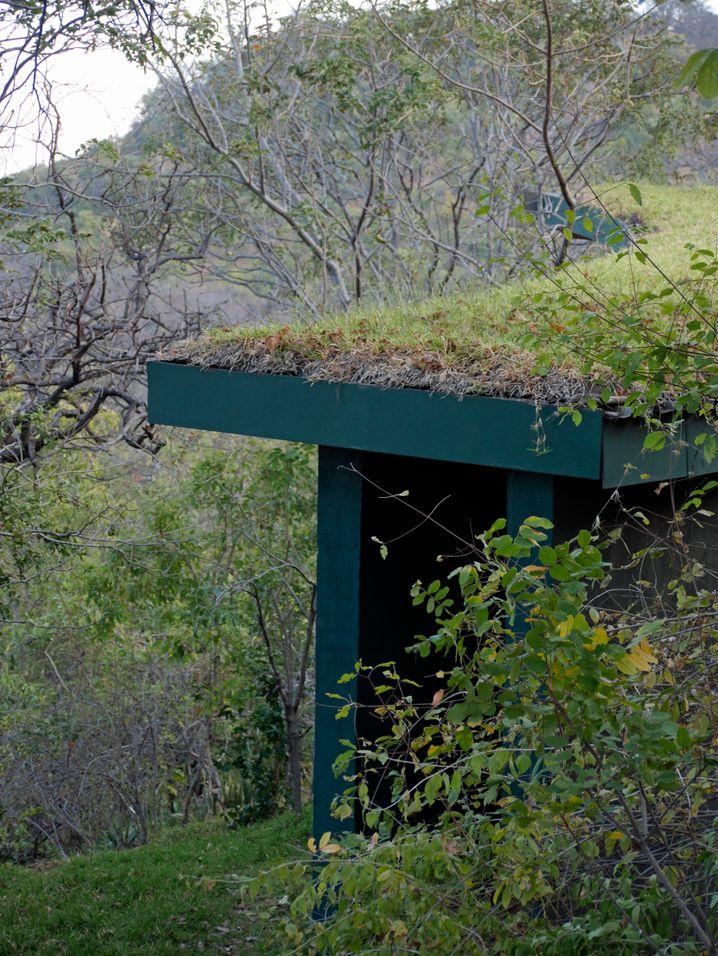 Gut getarnt: Der Eingang zu einer der Villen der Pumulani Lodge