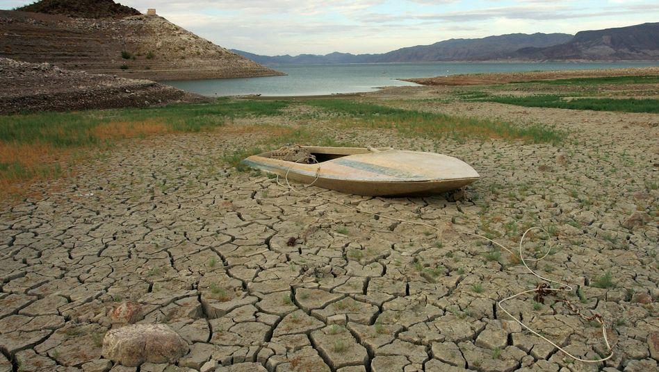Wasserreservoir Lake Mead in Nevada: Jetzt rächt sich die Verschwendungssucht der Amerikaner