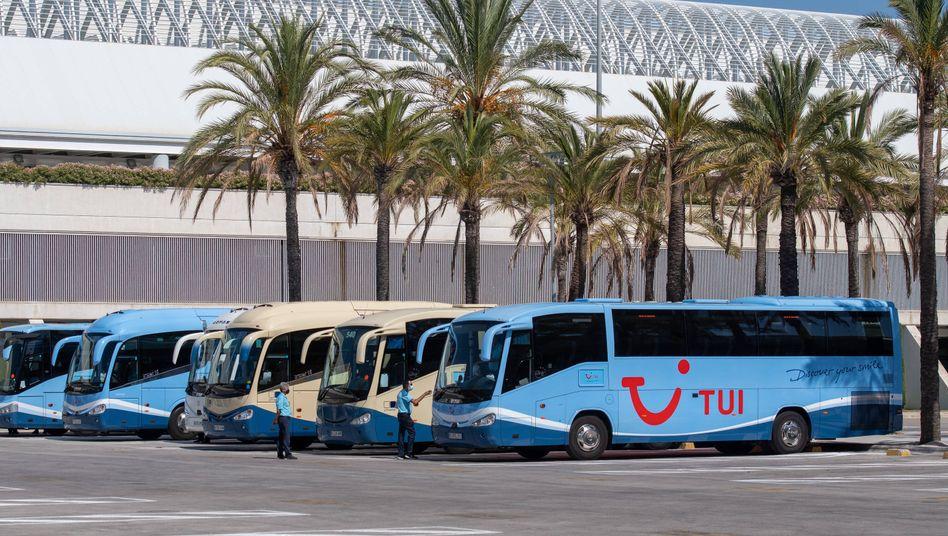 Tui-Busse am Flughafen von Palma de Mallorca: Der deutsche Reise-Riese wird vorerst auf unbestimmte Zeit keine Pauschalreisen mehr zu der Insel anbieten