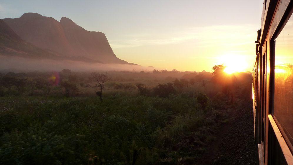 Zugreise in Mosambik: Bahnfahrt unter Baobab-Bäumen