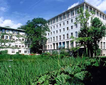 Es grünt, so grün: Pflanzlicher Wildwuchs vor der Allianz-Zentrale in der Münchener Königinstraße. Das Headquarter des Finanzkonzerns grenzt mit der Rückseite an den Englischen Garten.