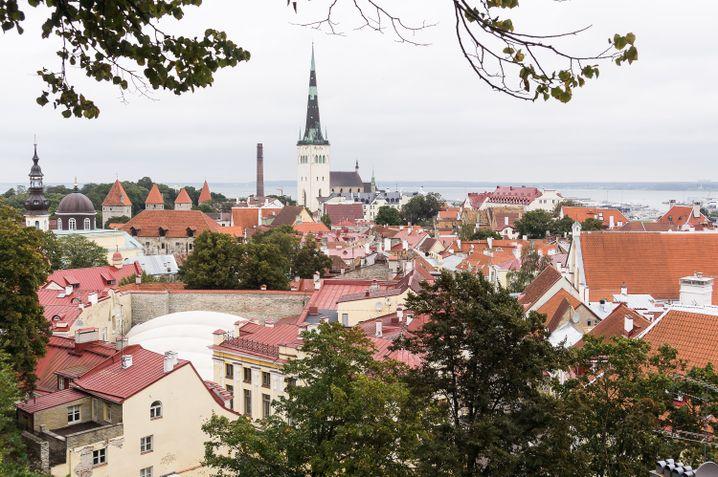 Tallinn ist ein hübsches Städtchen mit einem mittelalterlichen Altstadtkern - und es gibt viele gute Restaurants.