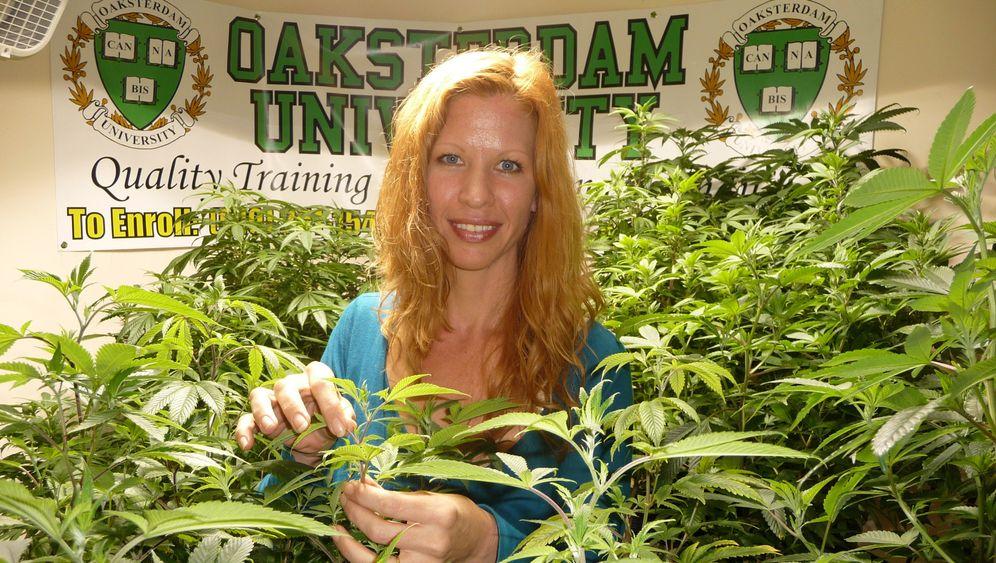 Legales Cannabis: Milliardengeschäft im Sunshine-State