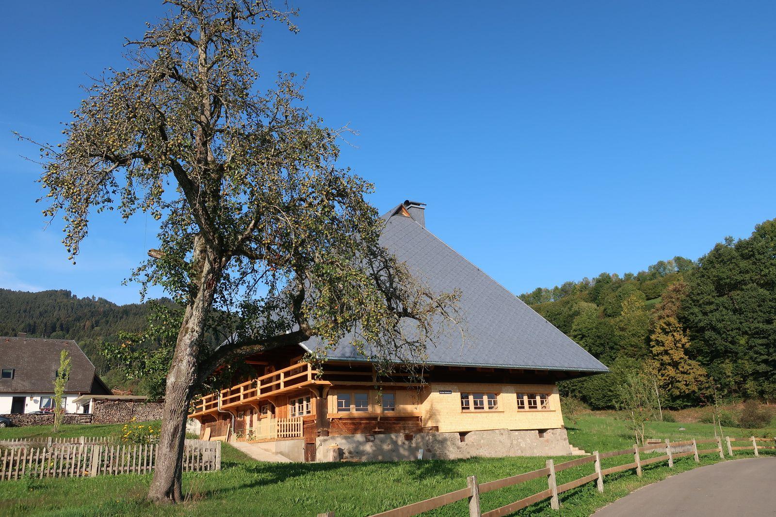 Fusenhof