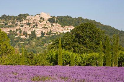 Idylle im Lavendel: Das Dorf Lacoste in der Provence