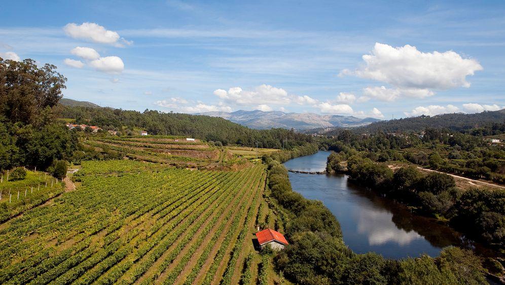 Portugal: Unterwegs auf den schönsten Weinrouten