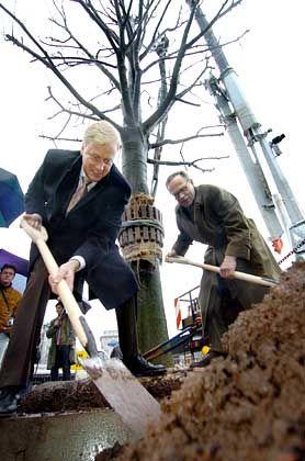 Silberlinden: Fielmann und Hamburgs Bürgermeister Ole von Beust pflanzen Bäume am Jungfernstieg