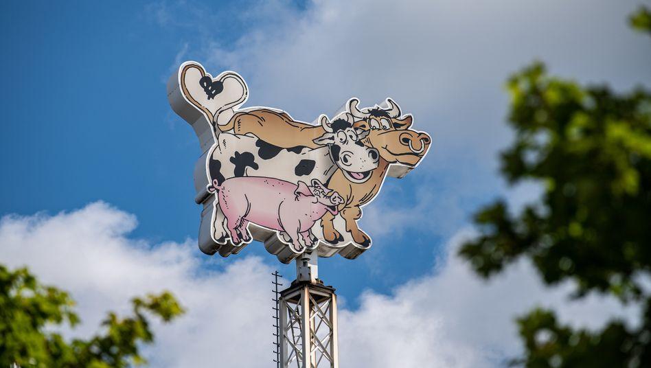 Beim industriellen Fleischverarbeiter Tönnies in Rheda-Wiedenbrück sorgen neue positive Corona-Tests für Aufsehen.