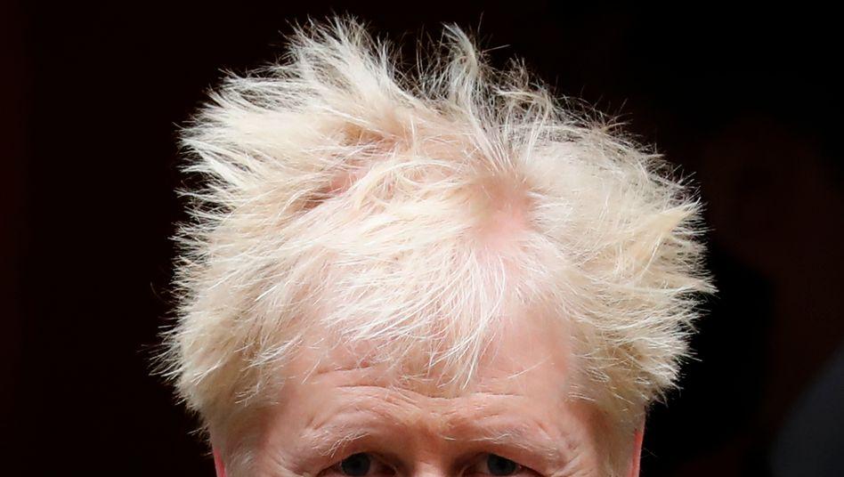 Boris Johnson: Die Irland-Frage ist zum Haareraufen