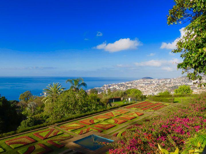 Vorne kunstvoll angeordnete Pflanzen, hinten der Atlantik und die Stadt Funchal: Naheliegend, dass das Parterre des Jardim Botânico da Madeira ein besonders beliebtes Fotomotiv ist.