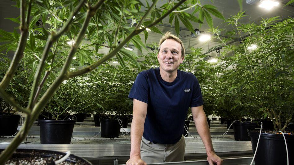 Bruce Linton, CEO vom weltgrößten legalen Cannabisproduzenten Canopy Growth: Investoren sind im Rausch