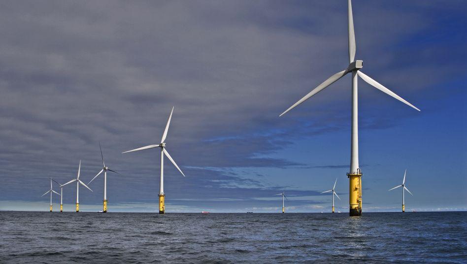 Windpark von RWE Innogy vor der Küste von Nordwales: Ausbau in Gefahr