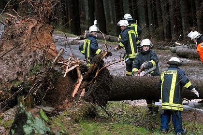 Schwere Sturmschäden: Überall in Deutschland stürzen Bäume auf Straßen, Schienen und Häuser