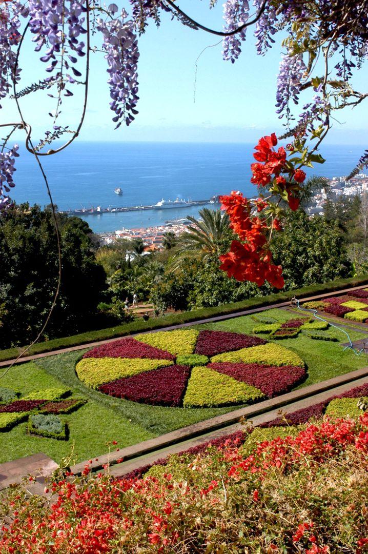 """Blütenpracht: Madeira heißt nicht umsonst """"Blumeninsel"""""""
