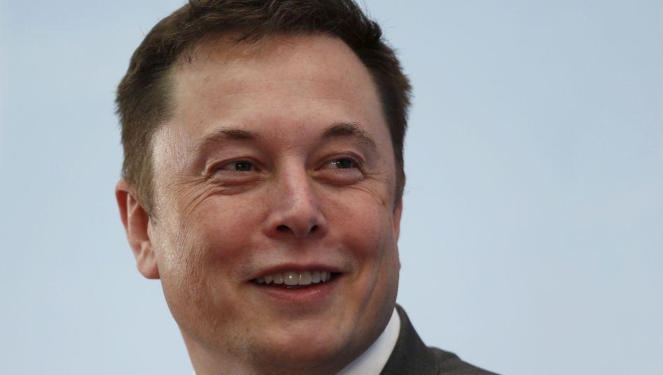 """Tesla-Chef Elon Musk: """"Torte ins Gesicht der Nein-Sager"""""""