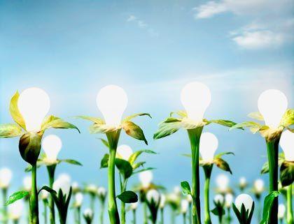 """Experte Hennicke: """"Energieeffizienz ist der siamesische Zwilling der erneuerbaren Energien"""""""