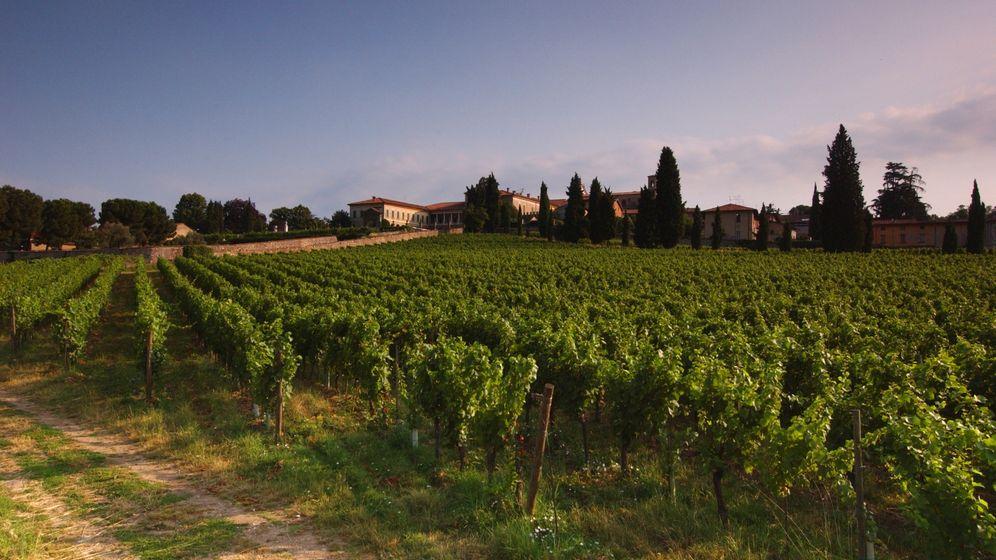 Weinempfehlungen: Die Franciacorta in fünf Kategorien