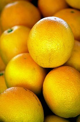 Teure Vitamine: Orangen