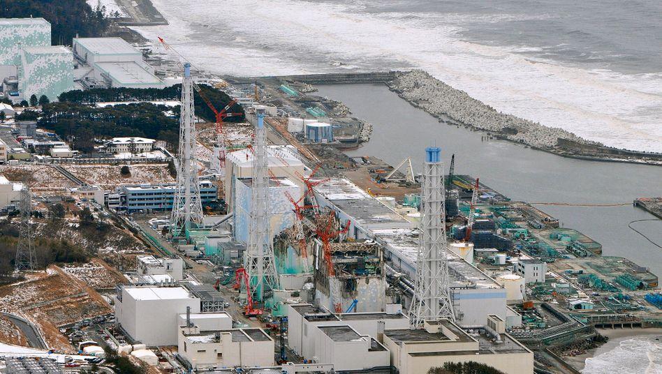 AKW-Ruine in Fukushima: Sicherheitsmängel und Behördenfilz