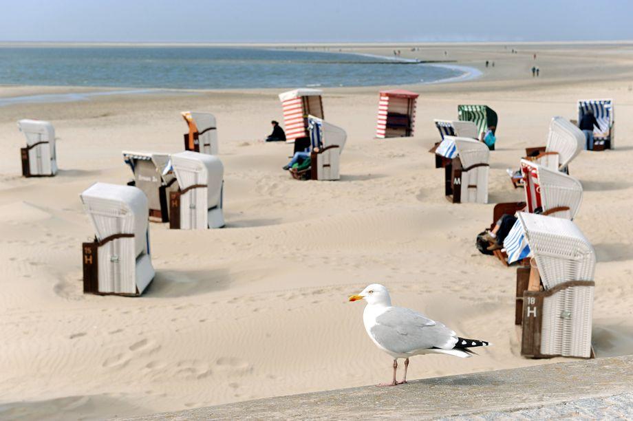 Nahziele liegen inCorona-Zeiten im Trend: Die Strandkörbe auf Borkum warten auf mehr Urlauber