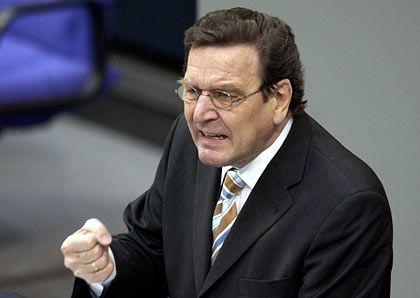 Gerhard Schröder (2004): Statistiken auf einer Linie mit der Großen Koalition
