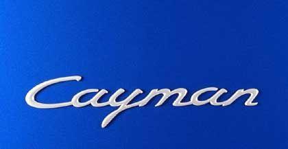 Cayman-Schriftzug: Ein bissiges Reptil soll Porsche neuen Umsatz bringen
