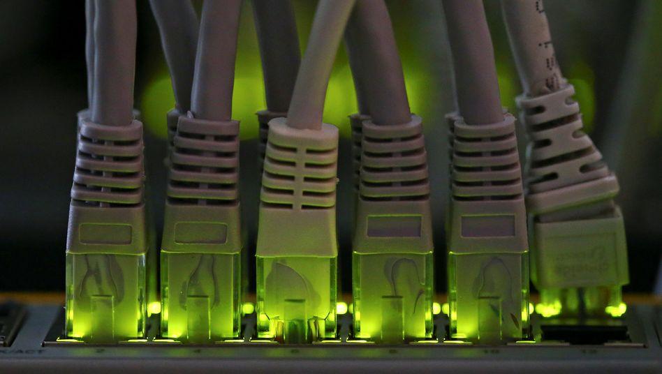 Grüne Alternative: Netzwerkkabel in Bitcoin-Mininganlage in Florenz