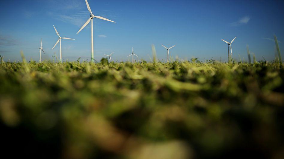 Windpark: Der DSW nennt das Geschäftsmodell von Prokon undurchsichtig