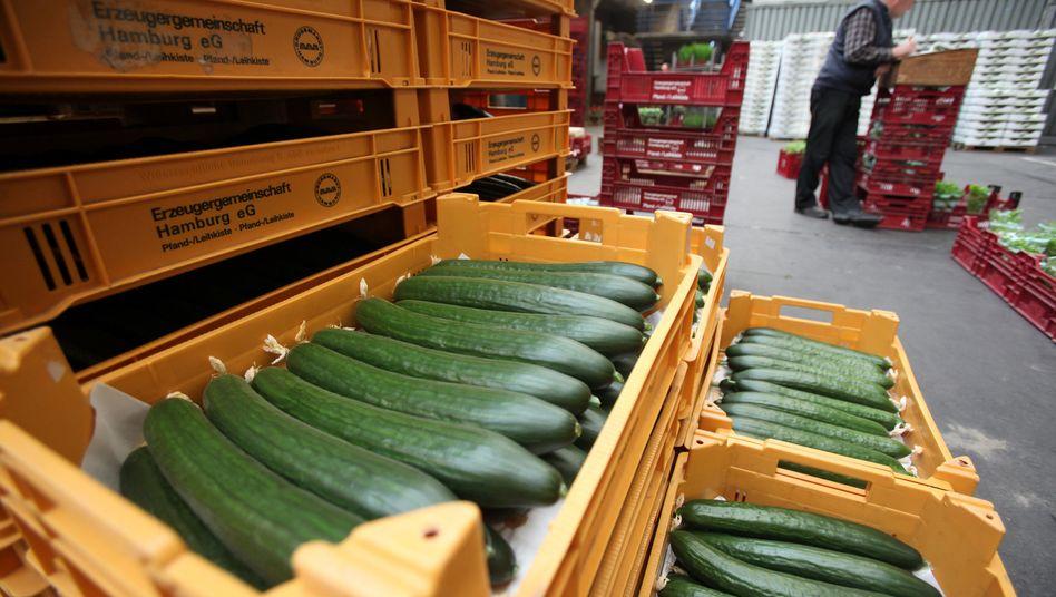 Gurken in einer Kiste auf dem Großmarkt Hamburg: Tschechien und Österreich nehmen spanische Biogurken aus den Regalen