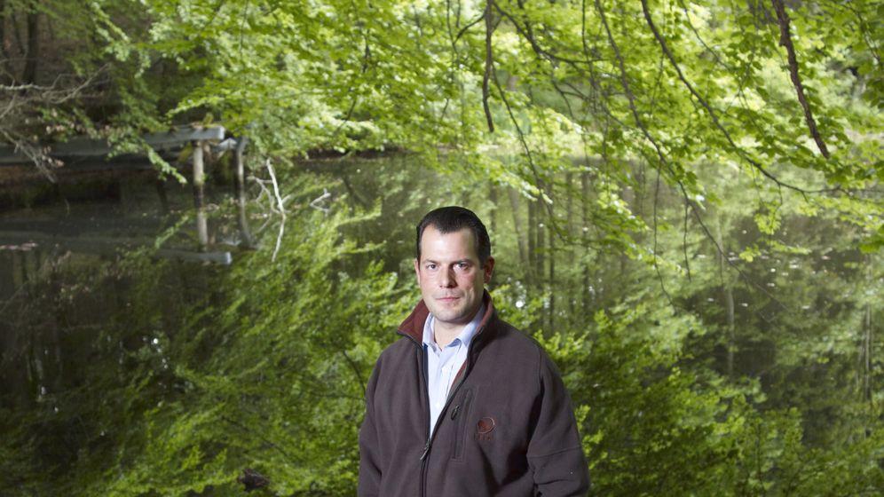 Forstwirtschaft: Der Wald als Geldanlage