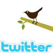 Twitter-Start-ups: Fast täglich erscheinen neue Onlinedienste basierend auf der Twitter-Technik