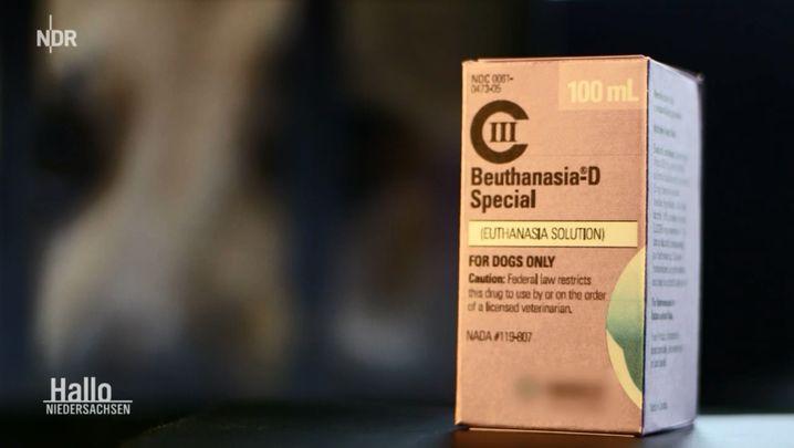 """""""Beuthanasia-D"""" soll laut Produktbeschreibung nur zum Einschläfern von Tieren verwendet werden"""