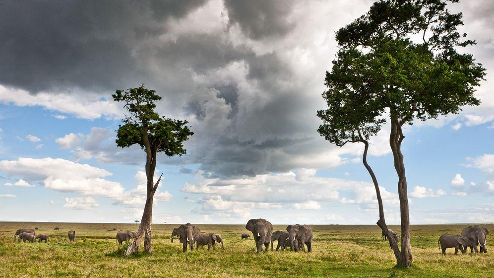 Polizas Kenia: Der Natur so nahe