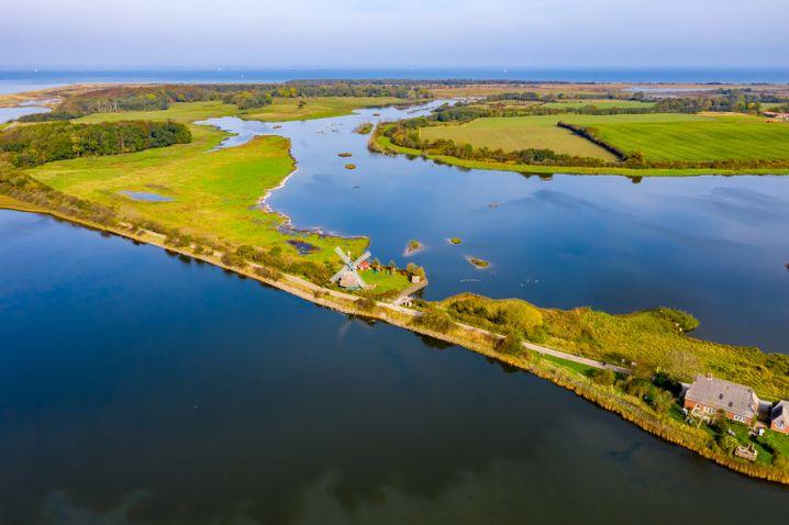 Ruhe und Idylle am Wasser: Naturschutzgebiet Geltinger Birk an der Küste Schleswig-Holsteins.