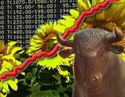 Baldiger Boom? Öko-Fonds liegen im Trend