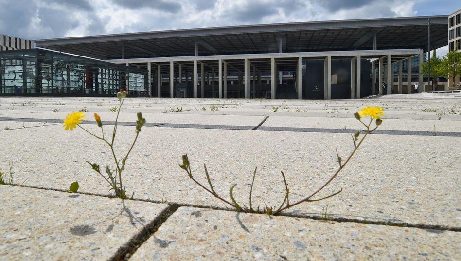 BER (im Juni): Auch Mitte Oktober war erst ein Bruchteil fertiggestellt