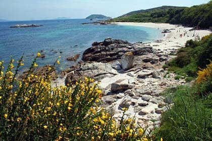 Unberührte Natur: Diesen Sandstrand finden Galicien-Urlauber auf der Insel Ons