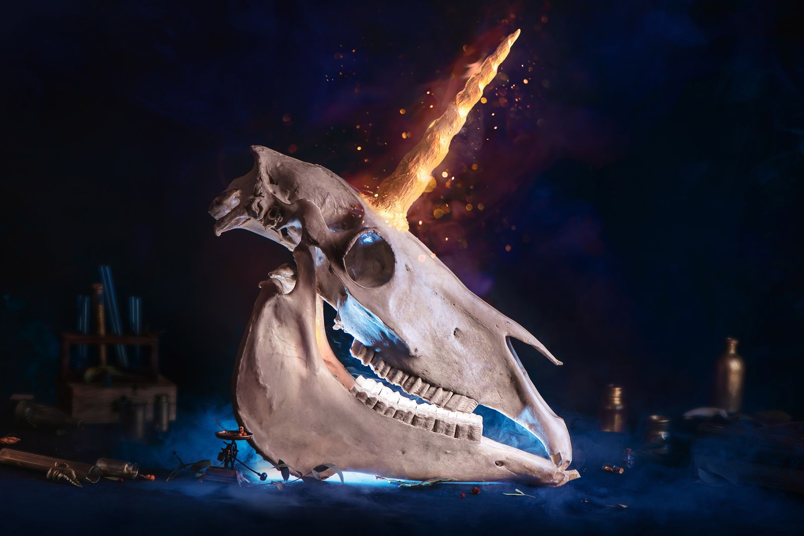 Magical unicorn skull with a shining horn. Creative magical archeology and bestiary concept. Cryptozoology still life.