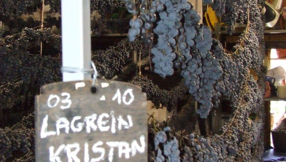 Wein aus Südtirol: So fein ist Lagrein