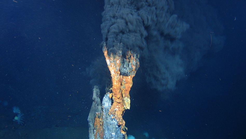 Rohstofferkundung im Indischen Ozean: Suche nach wertvollen Mineralien