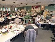 Großraumbüro, Brutstätte zwischenmenschlicher Zwistigkeiten: Jedes Biotop hat seine eigenen Gesetze