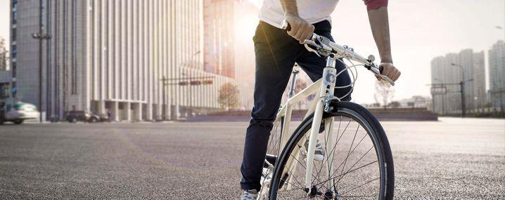 Freygeist E-Bike, Gewicht 12 kg, Preis 3.990 Euro, Nennleistung 250 Watt, laut Hersteller Höchstgeschwindigkeit 25 km/h, Reichweite 100 km