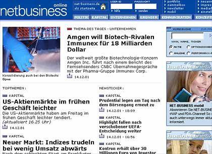 """Screenshot der Homepage von """"netbusiness.de"""""""