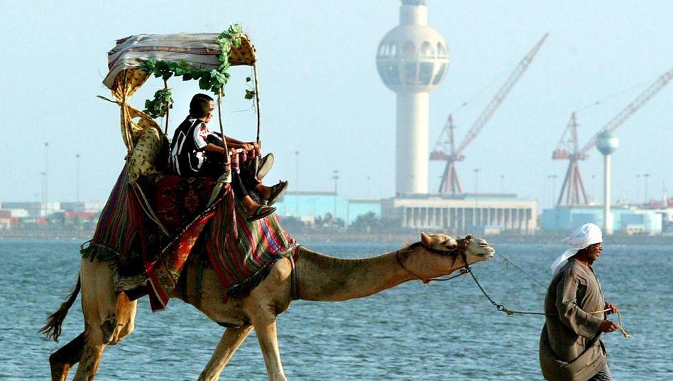 """Saudi Arabien: Scheich will reicher sein als """"Forbes"""" errechnet hat"""